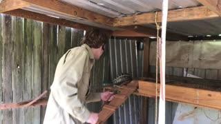 Python Caught in Chicken Coop