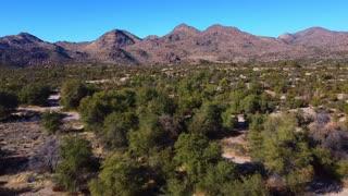 Arizona/oak flat arizona