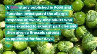 4 Foods That Fight Seasonal Allergies