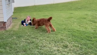Excited Pup Gets Baby Giggling