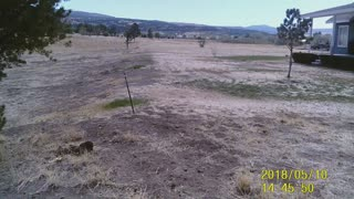 Arizona Golf Course Property For Sale