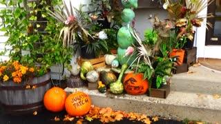 New Hampshire Pumpkin People