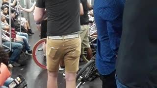 Subway Passengers Racist Rant