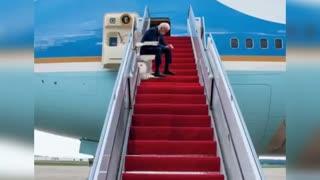 Joe Biden Falling Memes Video Compilation
