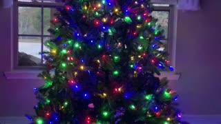 My Beautiful Christmas Tree