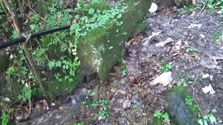 West Virginia Cabin Natural Spring Water Source