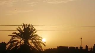 Beautiful morning sunrise africa (natural)