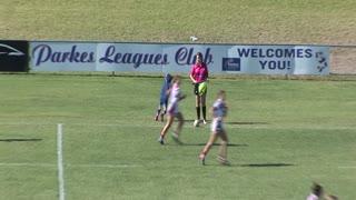 Kangaroo Interrupts Rugby Game