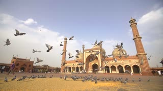Group of Pigeons Flying Formation in Front of Masjid ' Ya Allah '