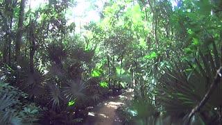 Xel-Ha Park Lagoon Mexico Carribean Part 24