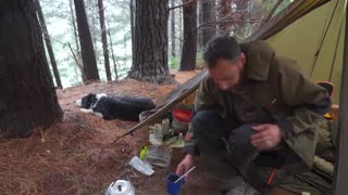 Camping in Rain With Dogs