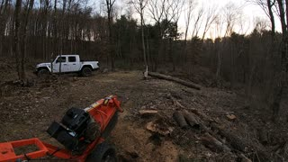 Last Stump Removal for the Day