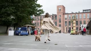 Beautiful Fluffy Dog Enjoy Running With Owner