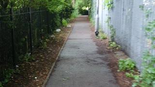 Foot path looks like a gungle