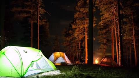 Relax Library: Video 83.Camping In The Forest At Night.