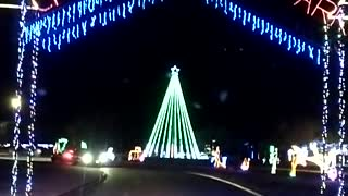 Christmas lights in College Station Texas