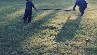 Toddler preciously plays with Cane Corso best friend