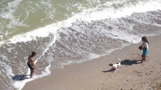 Teach your dog to play with you on the beach.