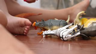 Baby Plays with Animal Toys