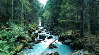Relaxing Waterfall Forest Sounds