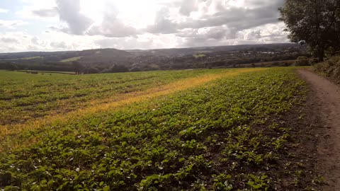 The field next to the motorway