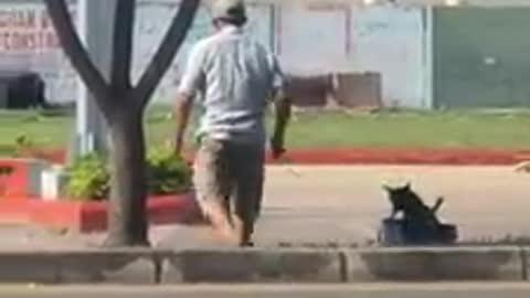 Graban a un hombre que tiraba misteriosamente de un camión de juguete con un pequeño perrito