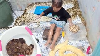 Little Girl Gives Crocodile a Bath