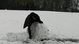 Guy steps on giant snowball, breaks it in half, and falls down