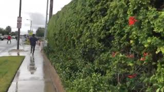 Yorba Linda, California near Los Angelese: 5 people killed after plane crashes into house...