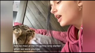 Watch funny clips collection for cats