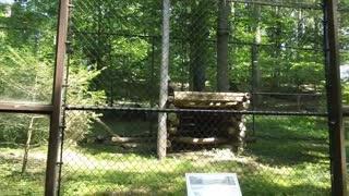 West Virginia wildlife center