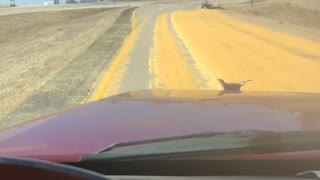 Semi Truck Spills Corn Load onto Highway