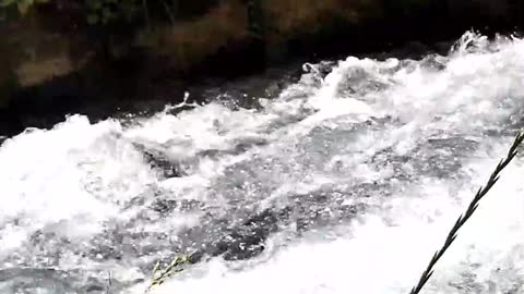 Nature, Rivers, Sound of Nature