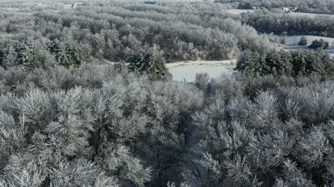 Frosty Drive 2021
