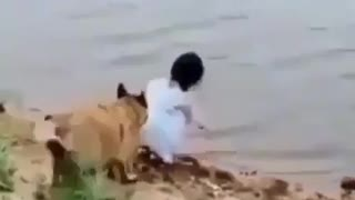 Dog save girl from falling into the water