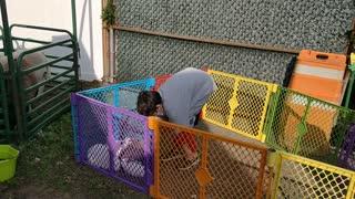 Spencer petting bunnies at fall festival - VID_20201010_101623