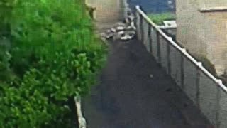 Chevy truck blows through a brick wall.