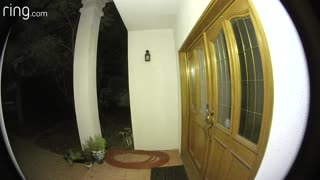 Orbe entering house caught on tape!