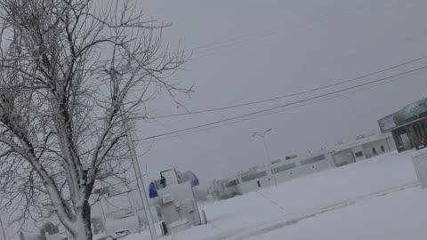 White Snow Everywhere