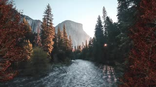 Relax Library Video 68. River running through the forest
