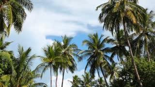 Travel to Maldive