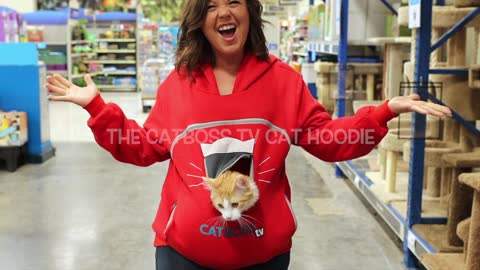 Cat hoodies are the way of the future!