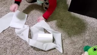 Toddler gets caught toilet papering his room.