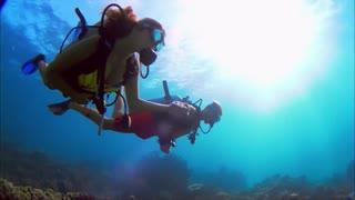 Couple Swimming Under The Sea