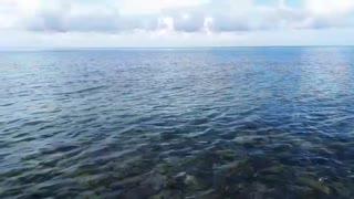A day in Rocky beach