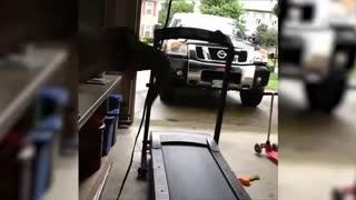 Treadmills epic fails funny