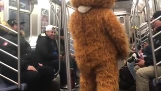 Person in a hamster suit on a subway