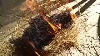 Making Fire