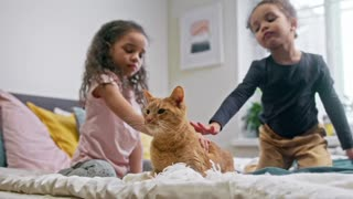 Kids Petting Their Cat On The Bed