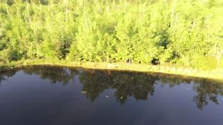 Drone flight over lower pond
